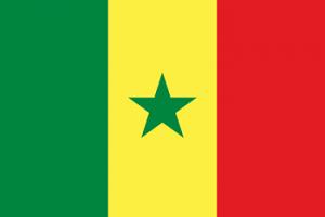 Afrikta Senegal business directory- companies in senegal