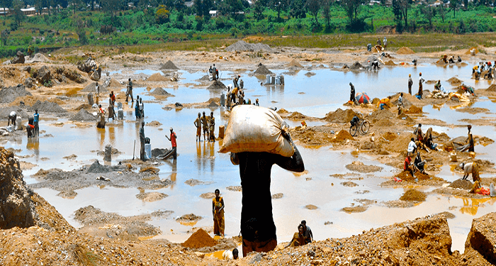 5 biggest natural resources in Congo DRC