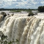 Dewclaw Eco-Tours and Safaris