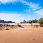 Golden Palms Films
