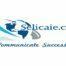 Selica International Ltd Egypt